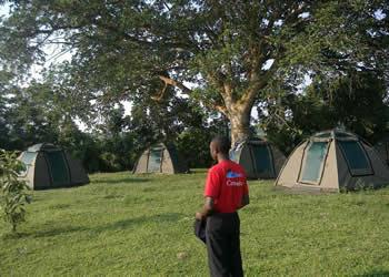 Queen Elizabeth Camping Site